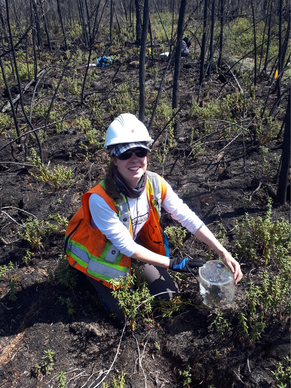 McMaster PhD student Sophie Wilkinson measures evapotranspiration  – the amount of water lost due to evaporation from soil, vegetative surfaces and lakes, as well as through the pores of leaves during photosynthesis – on an area of peatland in northern Alberta.