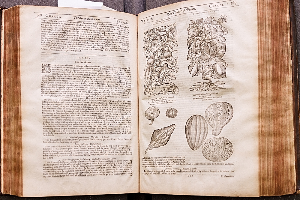 PARKINSON, John.Theatrum Botanicum. (First edition; London, 1640)