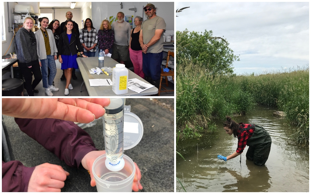 (Top left) A group of community volunteers who took part in a citizen science workshop in the Bruce Peninsula. (Bottom left) Example of a simplified water sampling technique developed by the project team. (Right) Project co-lead, Alana Tedeschi, places a rod for wetland monitoring.