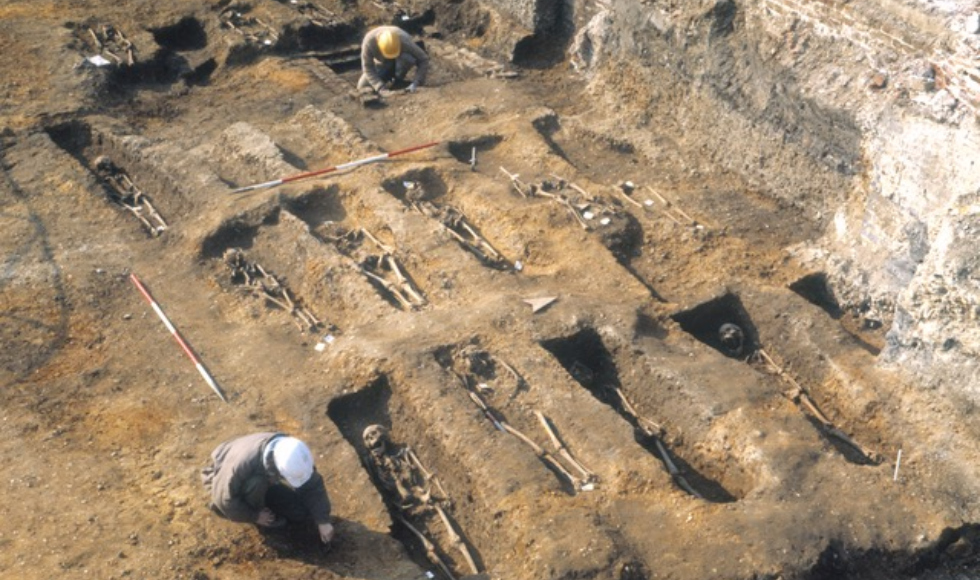 Two people in hard hats work in a medieval cemetery. Picture shows narrow rectangular graves with skeletons in them