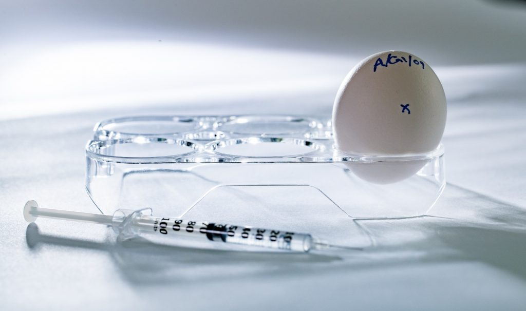Syringe and a labelled egg, used to study influenza virus.