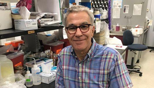 Manel Jordana, professor of medicine sits at a desk.