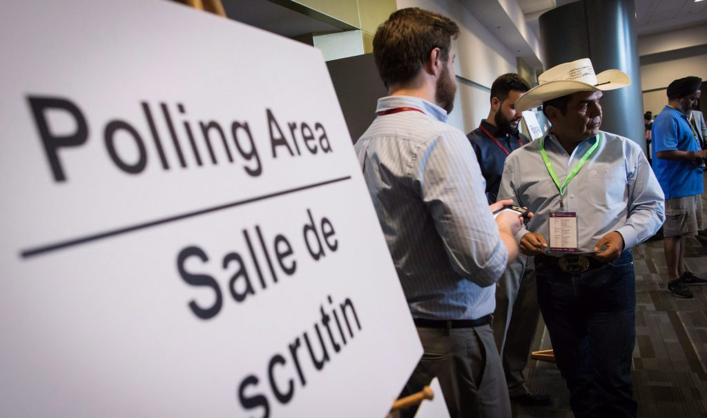 Sign that says Polling Area in foreground with people in the background.