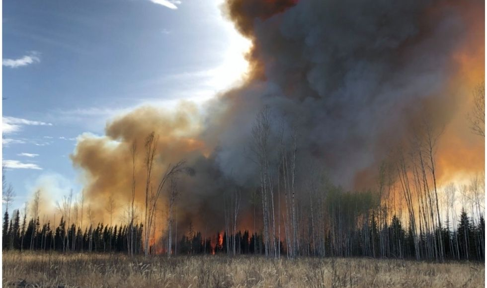 Huge plumes of grey smoke rising out of a fire in a wooded area